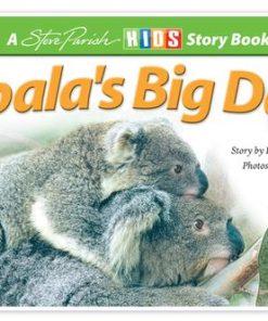 Koala's Big Day