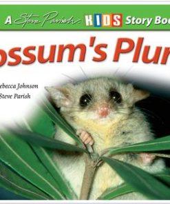 Possum's Plunge
