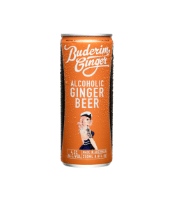 Product 250ml Alcoholic Gingerbeer01