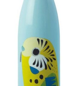 Product 500ml Stainless Steel Bottle Budgerigar