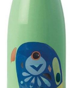 Product 500ml Stainless Steel Bottle Lorikeet01