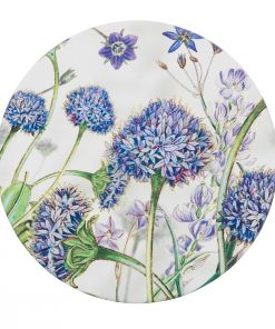 Product Coaster Brunonia Australis01
