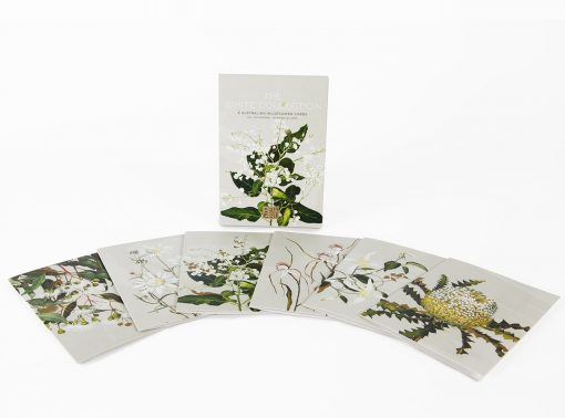 Product Australian Wildflower Blank Card Pack01